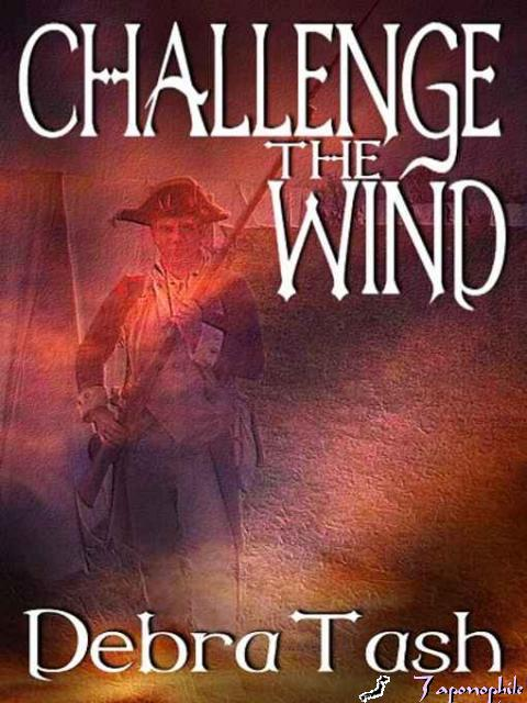 REVIEW:  Challenge the Wind by Debra Tash