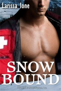 REVIEW: Snowbound by Larissa Ione