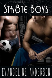 REVIEW: Str8te Boys by Evangeline Anderson