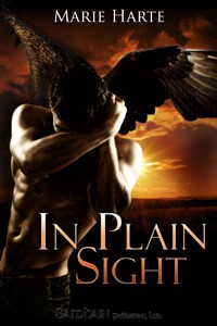 REVIEW: In Plain Sight: A Cougar Falls Story by Marie Harte