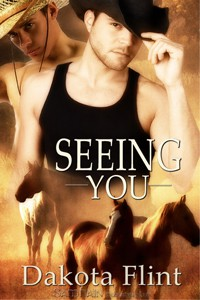 REVIEW: Seeing You by Dakota Flint