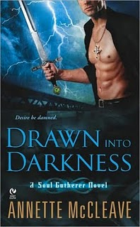 REVIEW:  Drawn into Darkness by Annette McCleave