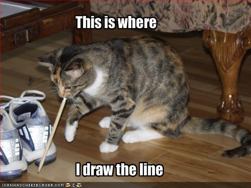 funny-pictures-cat-draws-the-line