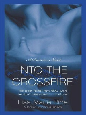 REVIEW: Into the Crossfire by Lisa Marie Rice