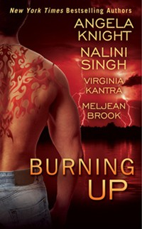 REVIEW: Burning Up by Singh, Knight, Kantra and Brook
