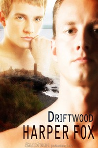 JOINT REVIEW: Driftwood by Harper Fox