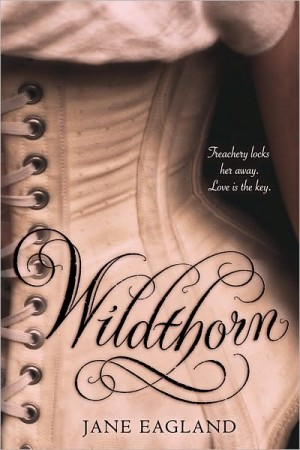 REVIEW: Wildthorn by Jane Eagland