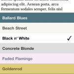 Bluefire Theme Settings