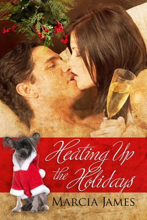 REVIEW: Heating Up the Holidays by Marcia James