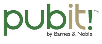 pubIt logo
