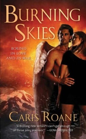 REVIEW: Burning Skies by Caris Roane