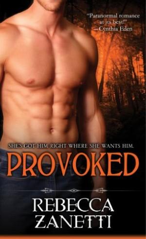REVIEW:  Provoked by Rebecca Zannetti