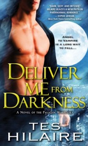 Deliver Me from Darkness: A Novel of the Paladin Warriors Tes Hilaire