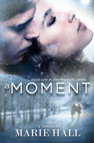 REVIEW:  A Moment by Marie Hall
