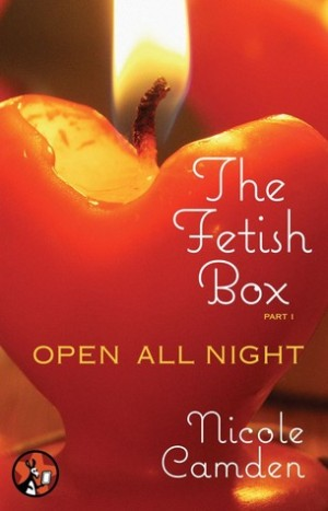 REVIEW:  The Fetish Box by Nicole Camden
