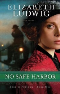 No Safe Harbor by Elizabeth Ludwig