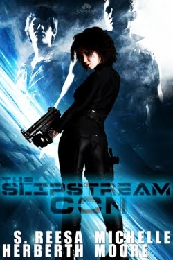 REVIEW:  The Slipstream Con by S.Reesa Herberth and Michele Moore