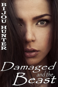 REVIEW:  Damaged and the Beast by Bijou Hunter