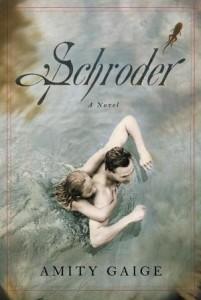 Schroder: A Novel Amity Gaige