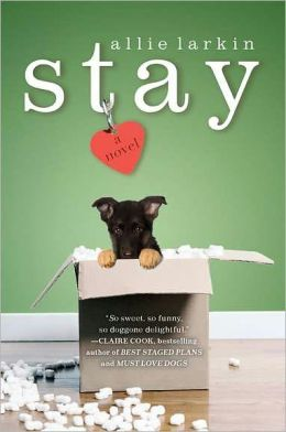 Stay: A Novel by Allie Larkin