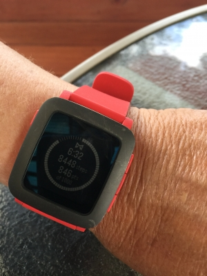 Pebble v Apple Watch